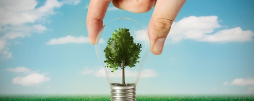 tree in bulb energy environmental