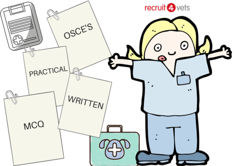 my top revision tips for a student veterinary nurse recruit4vets rh recruit4vets co uk