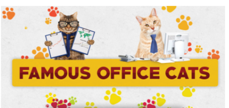 Famous Office Cats graphic with paw prints