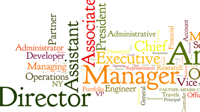Shane Lees blog on job titles in recruitment and other careers