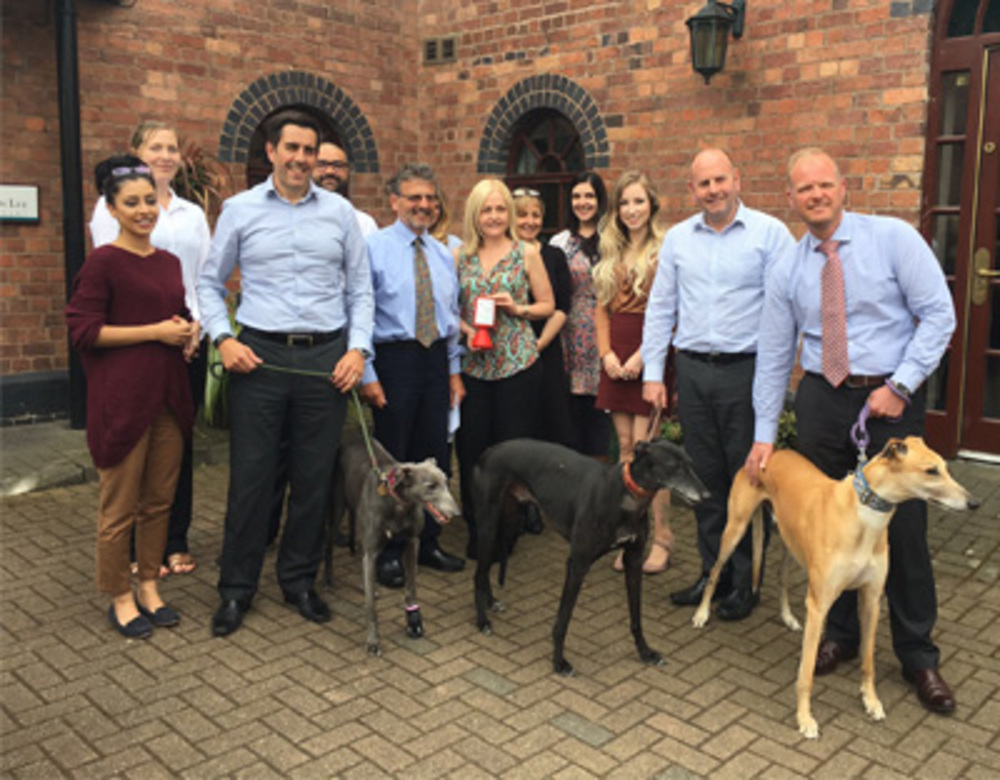 Jonathan Lee Recruitment team says hello to the greyhounds they support with HGRGT