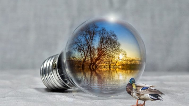 Are renewable energy sources the way forward?