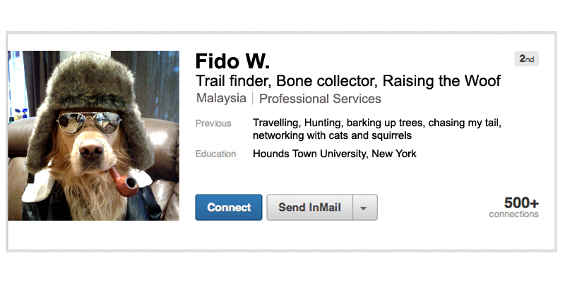 Linkedin profiles-the good, the bad, the ugly.