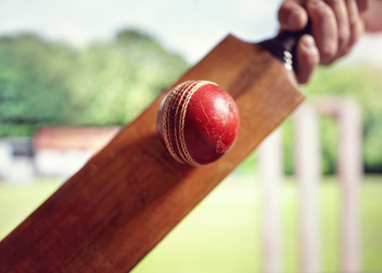 Celebrating ten years of the Manchester Professionals' Cricket League