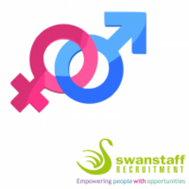 Swanstaff Pay Gap Report Icon