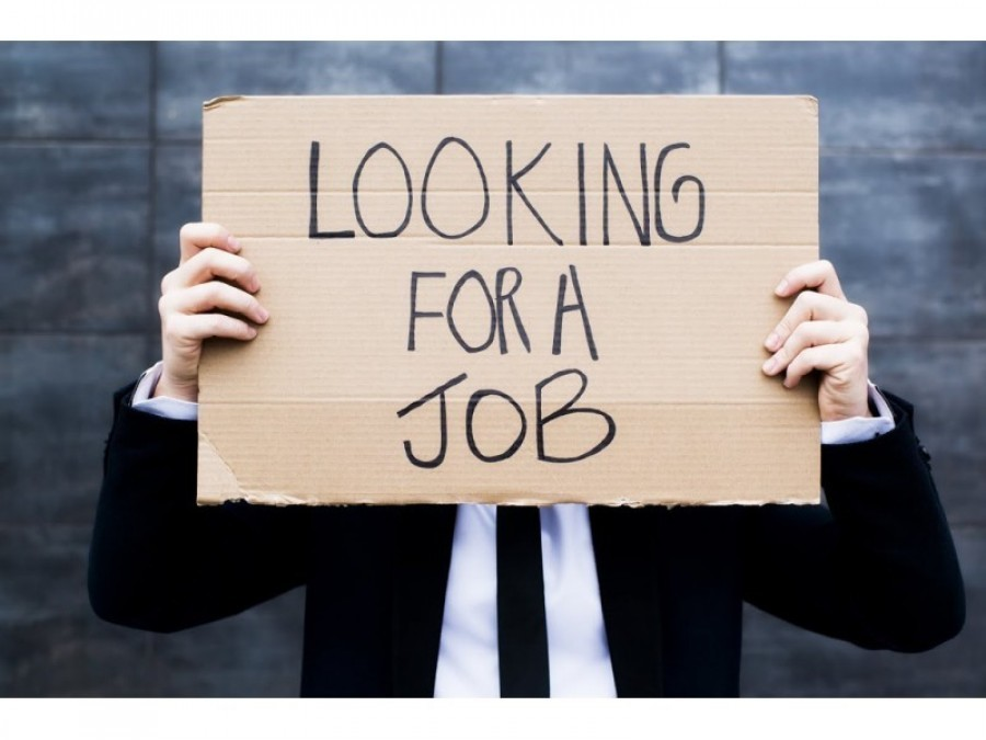 The Bushtucker Trials of job searching…
