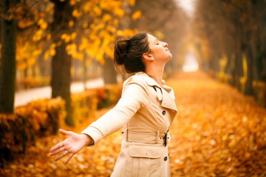 Why Autumn is the best time to job search