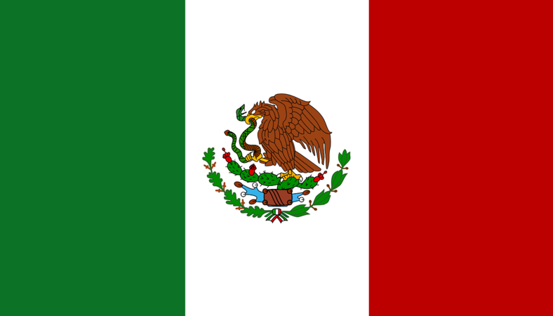 Private security jobs in Mexico