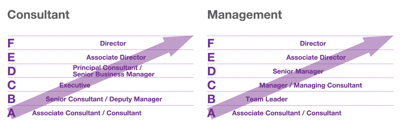 A graph outlining career progression in recruitment