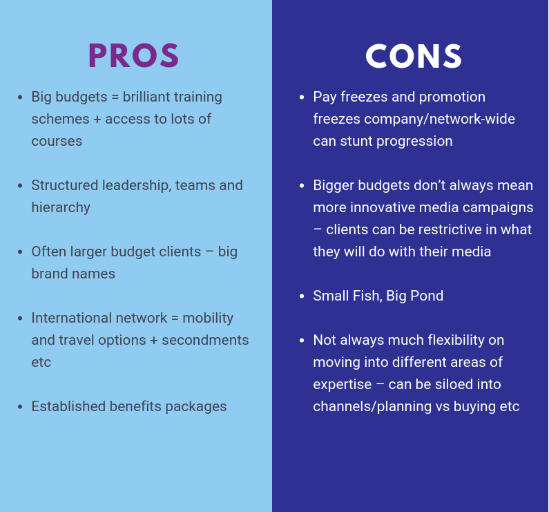 pros and cons of network agencies