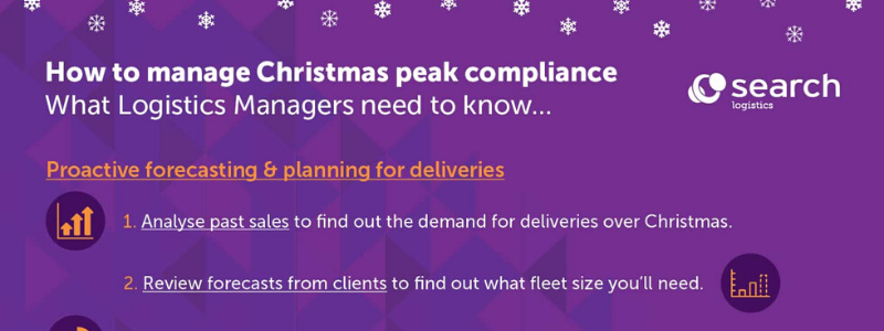 Search Consultancy Managing Christmas Peak Compliance [Infographic] Header Image