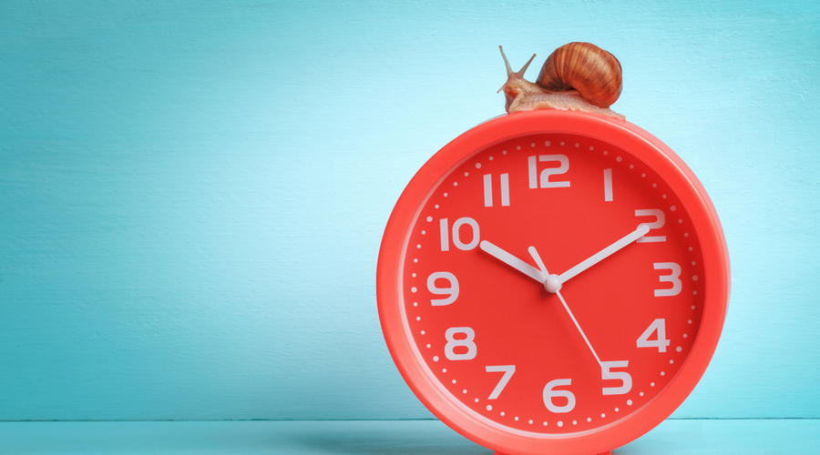 Clock with snail