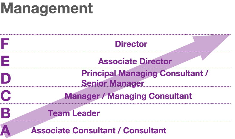 graph showing management titles