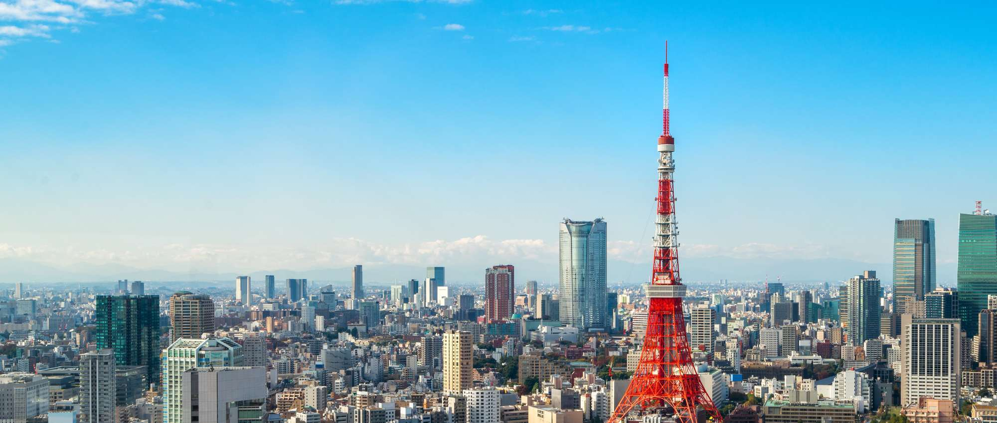 Tokyo's First Class Accounting & Finance Recruiting Partners