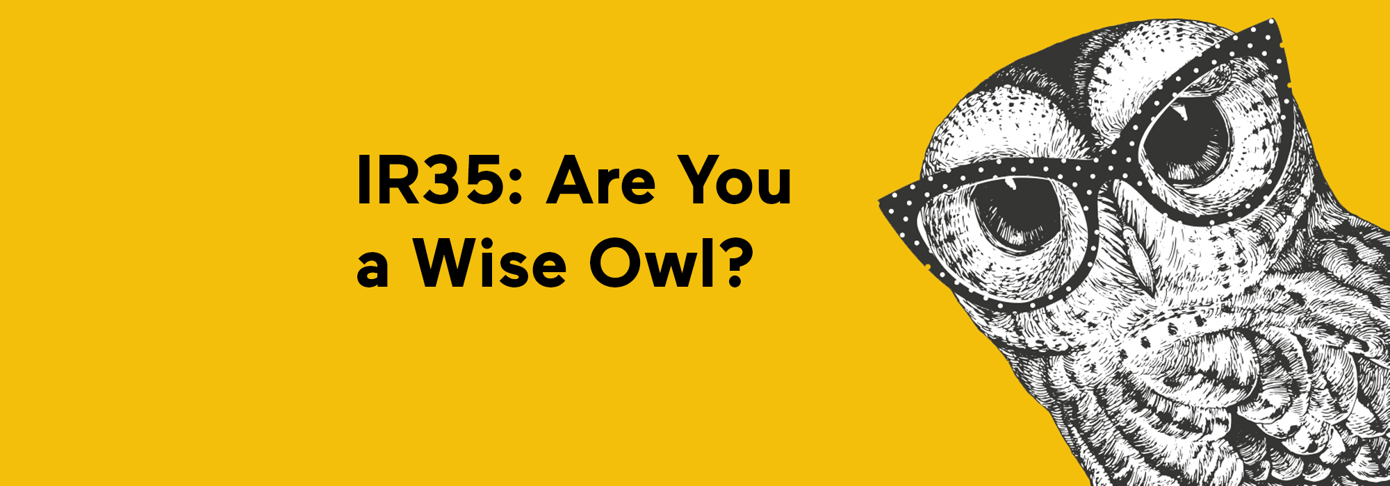 Thorn Baker Construction_IR25_Are you a Wise Owl