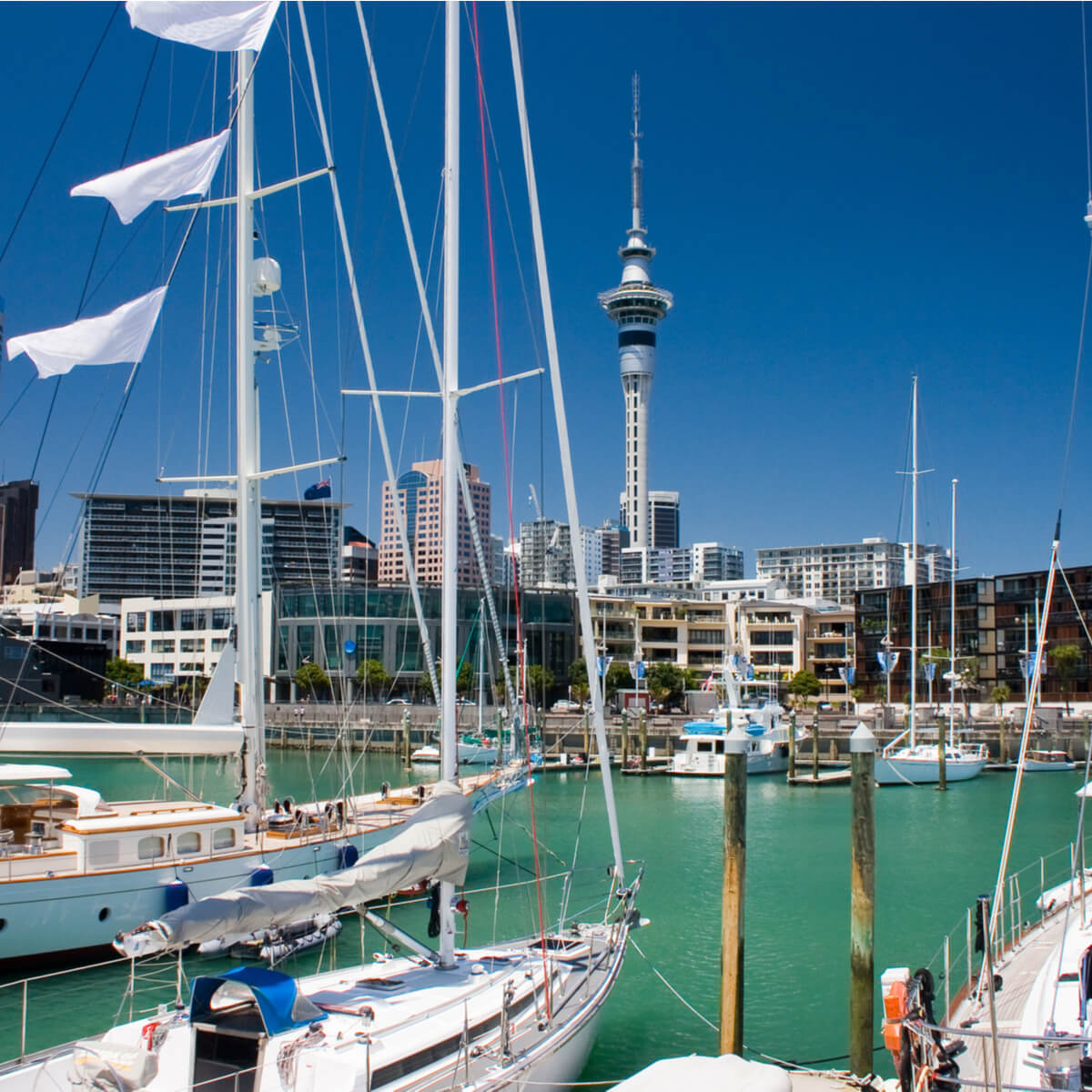 New Zealand Long Term and Regional Skills Shortages in Healthcare